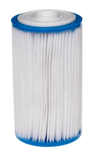 intex-filter-cartridge