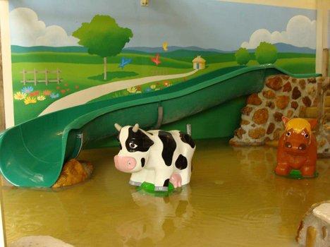 9707-cow-1